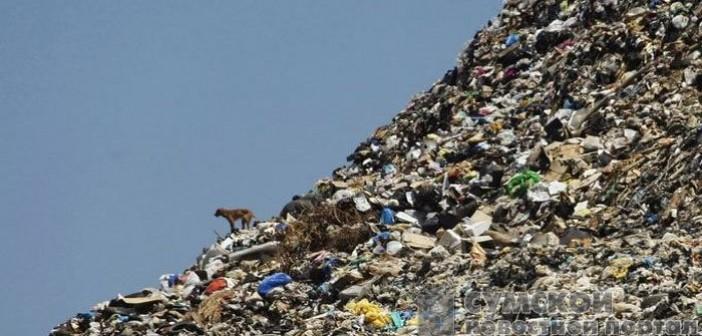 мусор из львова