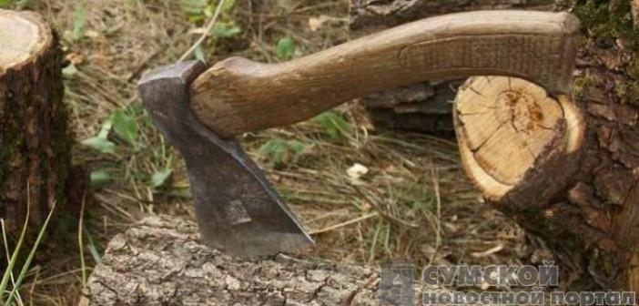 незконная порубка леса