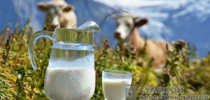 закупочные цены на молоко