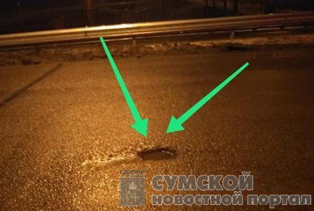горьковсий-мост-дыра