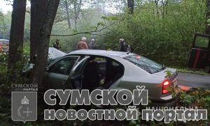 sumy-novosti-dtp-putivl'-shkoda