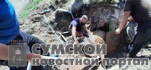 sumy-novosti-korova-v-bochke