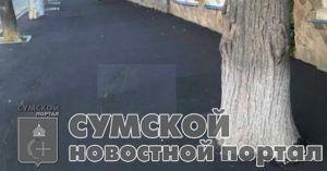 sumy-novosti-derev'ja-asfal't