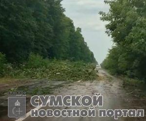 sumy-novosti-belopol'e-sumy-nepogoda