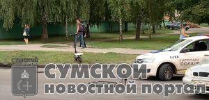 sumy-nvovsti-dtp-lushpy-jelektrosamokat