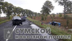 сумы-новости-дтп-андрияшевка-ваз