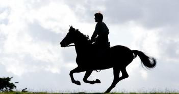 дайте хоть коня