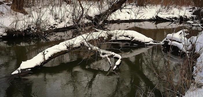боромля-река