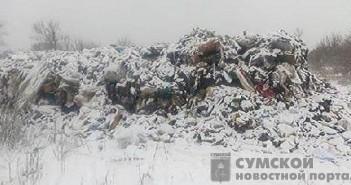 львовский мусор