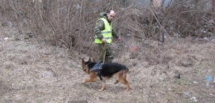 пес-полицейский