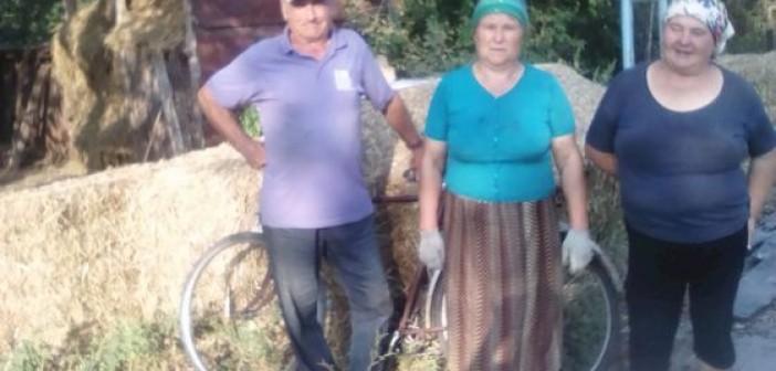 полошки-селяне