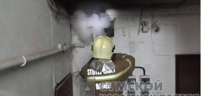 пожар-олеся