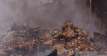 пожар-яйца-дубовязовка