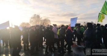 протетсы-симоновка