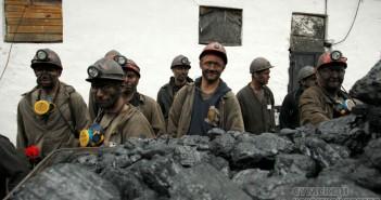 шахтеры-донбасс