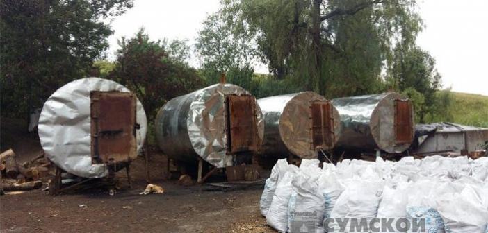 нелегальное производство древесного угля