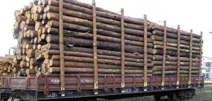 вагон-лес